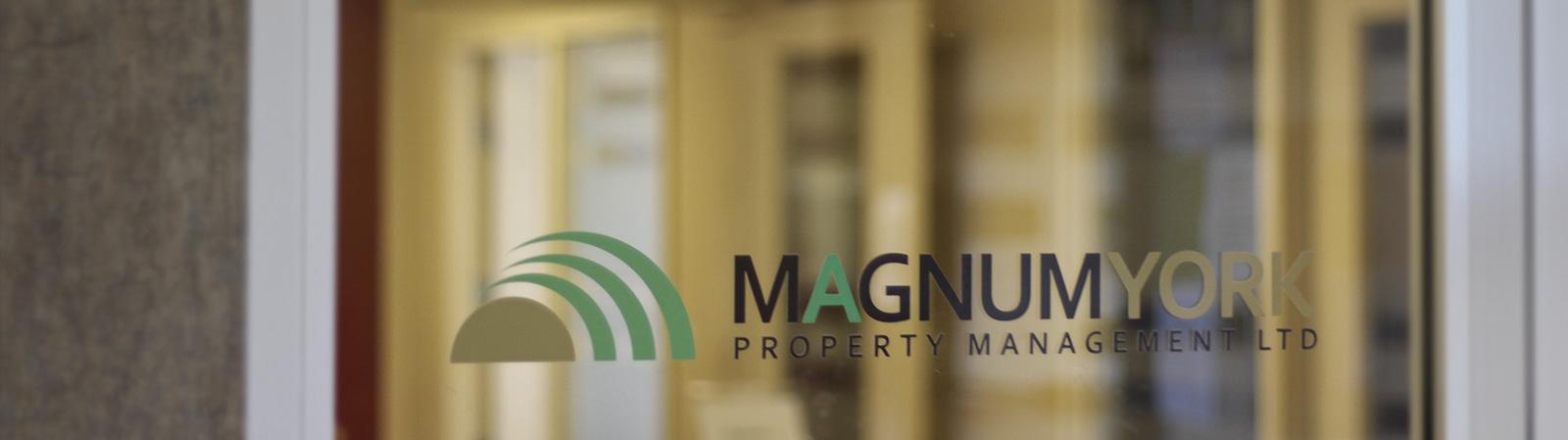 new coo blog post dean dunbar magnum office hire employee