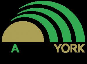 Magnum York Logo